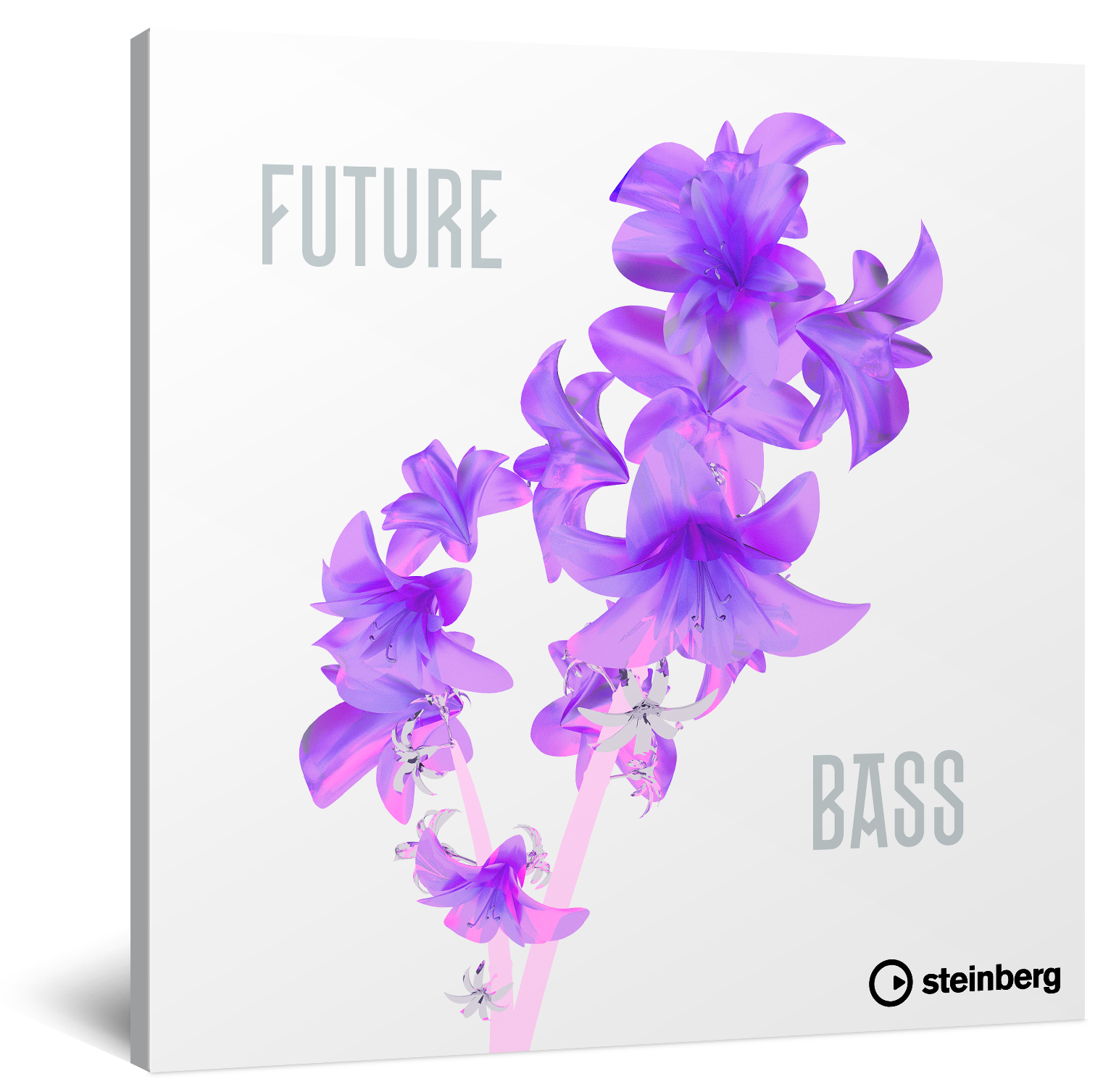 Future Bass Box